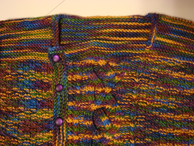 Finished! Close up of Pirate's Booty/Baby Yours sweater